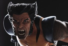 Unmasked Wolverine (PowerPee) Tags: toys philippines statues xmen marvel collectibles sideshow wolverine