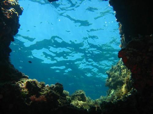 Isla Giannutri, Fotografía: riandreu