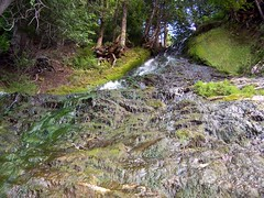 100_7794 (jeanthibca) Tags: riviere famine chutes leclerc