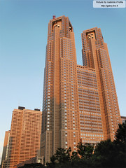 "Tokyo metropolitan government building <a style=""margin-left:10px; font-size:0.8em;"" href=""http://www.flickr.com/photos/24828582@N00/1348683838/"" target=""_blank"">@flickr</a>"