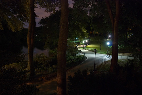 Central Park by night II