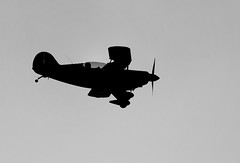 Silhouette of a winner (Bufalino Photography) Tags: centennial nikon denver nikkor 70300mm biplane aerobatic kapa pitts s2b d700 n5351n