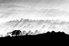 Bald Knob rays.jpg (dazza17 - DJ) Tags: sunshinecoast scapes anawesomeshot daryljames daryljamesphotographygmailcom daryljamesphographygmailcom dazza17 daryljamesphotograph 3rdcpnointernationalexhibitionofphotography