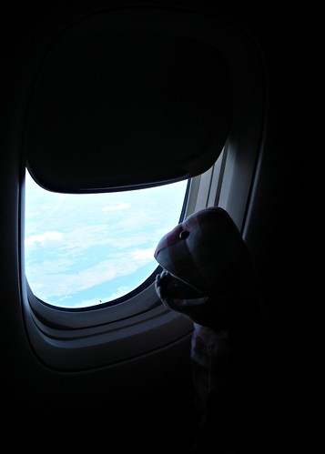 Mr Jummy's First Flight