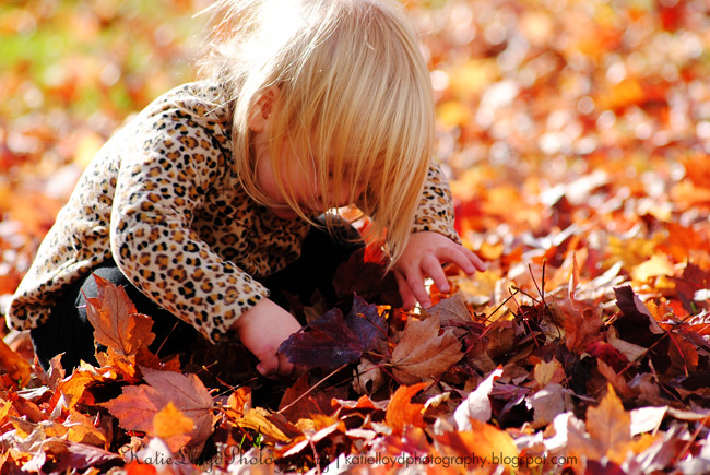 Rowan-collecting-leaves-3