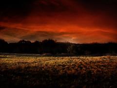 atardecer (*PabloF*) Tags: sky clouds atardecer paisaje nubes tormenta campo naranja cileo csped supershot blackribbonbeauty colourartaward excapture