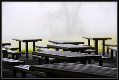 Morning Dew (lookin glass) Tags: park wood morning trees mist color green nature grass fog landscape outside outdoors scenery view scenic dew benches distant picnictables lookinglass nikond80