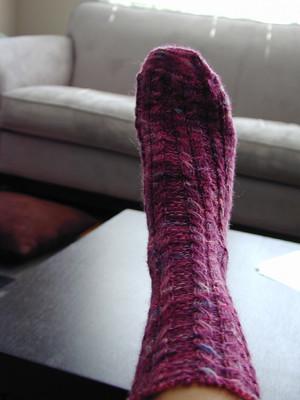 baudcal socks