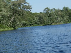 HPIM1260 (lockphilip) Tags: moonriver boreal