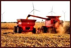 Twin Harvest (Rascaille Rabbit) Tags: county windmill illinois corn energy farm harvest windmills alternativeenergy alternative mclean windfarm redwagon cornpicker superhearts excapture mcleancountyillinois