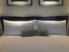 Peninsula Hotel (13)