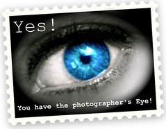 Yes! You have the photographer's Eye!