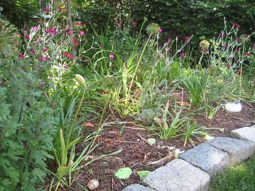 6.15.10 - Big Garden in Summer