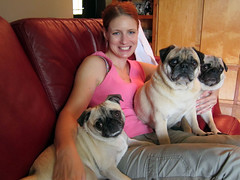 tammy with pugs