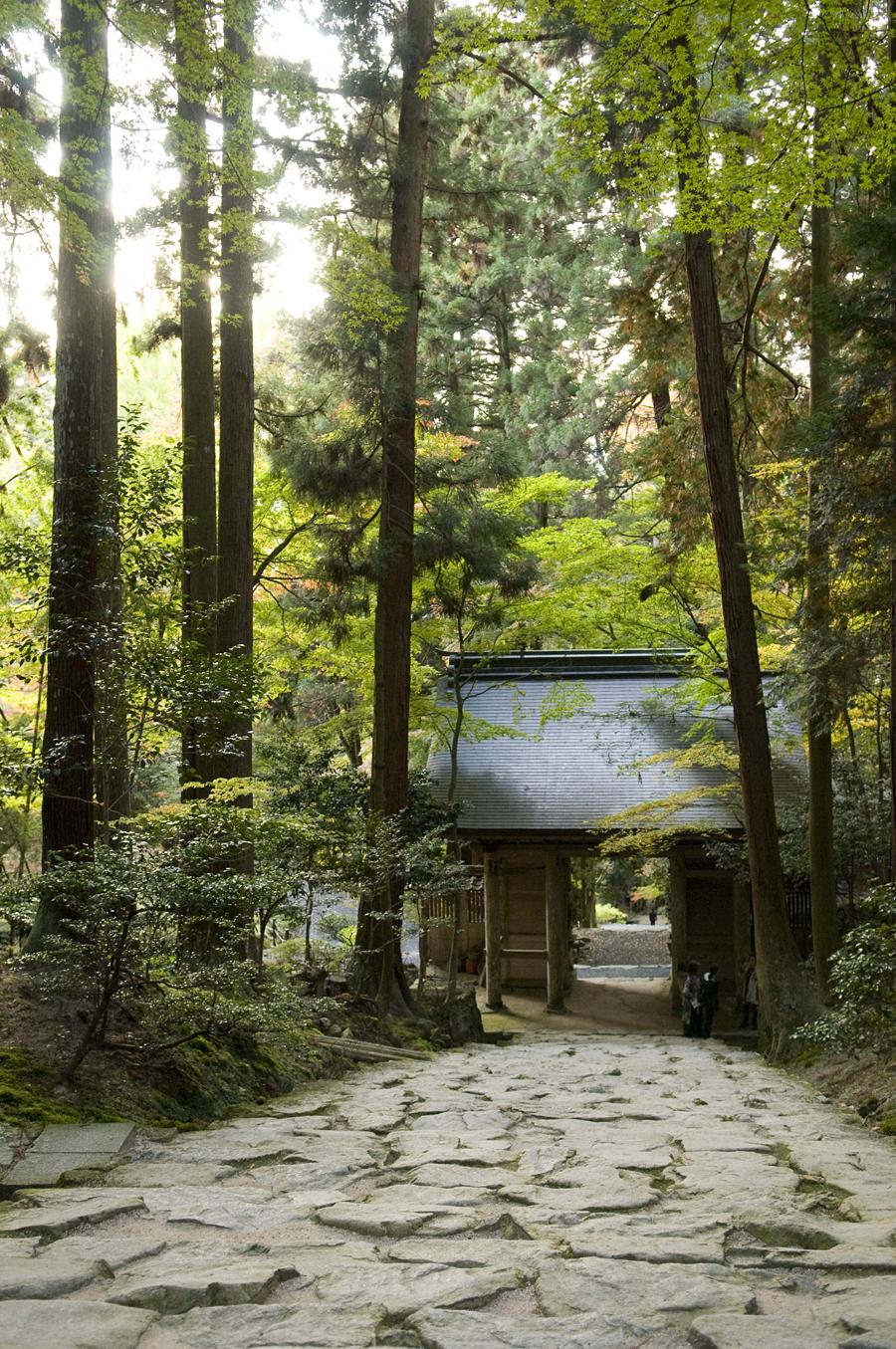 紅葉|百済寺(湖東三山)
