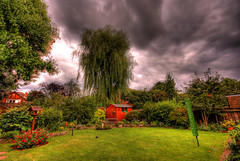 I lost my HDR virginity (petersmithgy) Tags: flowers trees plants house bird grass canon garden bench table back shed sigma lincolnshire willow 1020mm weeping hdr grimsby photomatix 400d last7daysinterestingness