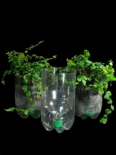 Recycled Plastic Bottle Planters