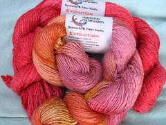 Chameleon Colorworks Evolution yarn