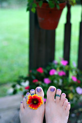 Flower Power FUTAB (Kerrie Lynn Photography (Sugaree_GD)) Tags: flower feet up tattoo outside outdoors backyard toes break deck taking tattooed sugareegd futab artsyfartsyfeet