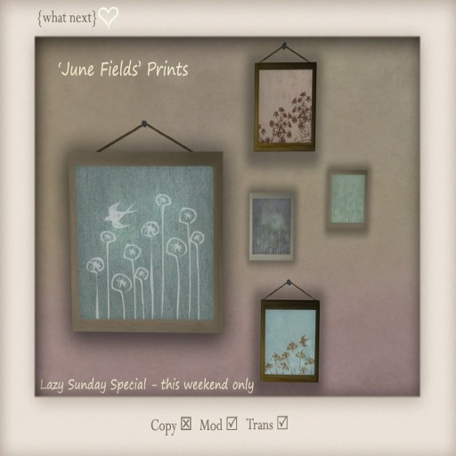 {what next} June Fields Prints for Lazy Sunday