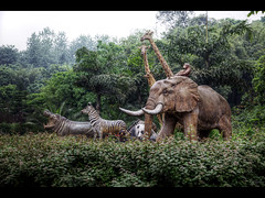 Happy animals (Kaj Bjurman) Tags: china animals eos zoo fake 5d chongqing hdr kaj markii cs4 bjurman