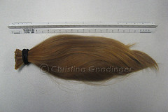 Hair to be donated to Locks of Love (joschmoblo) Tags: copyright me hair cut gone allrightsreserved 2007 locksoflove joschmoblo christinagnadinger