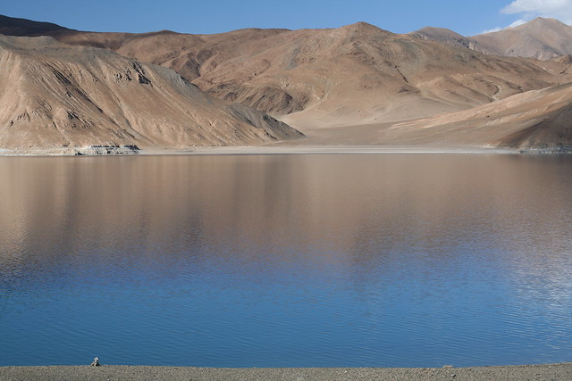 Pangong lake in the evening