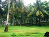 """Resort dining huts hidden in palm forest, Varkala • <a style=""""font-size:0.8em;"""" href=""""http://www.flickr.com/photos/9310661@N04/857516488/"""" target=""""_blank"""">View on Flickr</a>"""