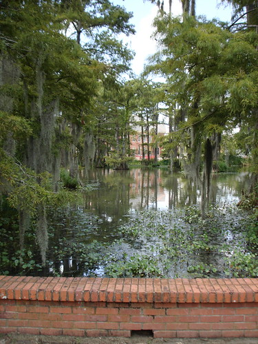 swamp on UL Lafayette campus