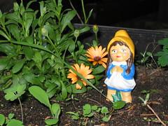 girl gnome (mindmanifesting) Tags: flowers girl modern garden gnome mind mysterious mindbending manifesting mindmanifesting mindmanifestingphotography