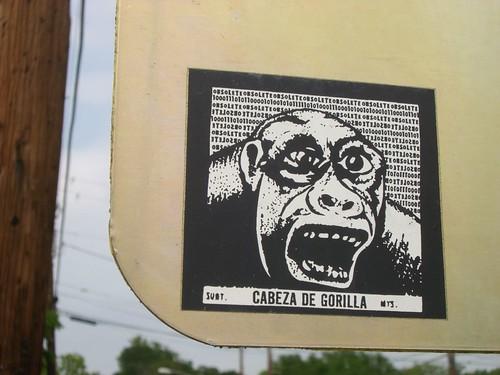Cabeza de Gorilla