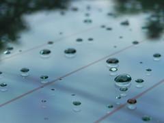 Water Drops (JεnnLynn) Tags: reflection window nature water car rain spring nikon coolpix thunderstorm gem p100 digitalcameraclub