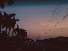 Streak (() lightweight) Tags: road street pink blue trees light sky tree cars lines car silhouette lights phone telephone silhouettes palm line