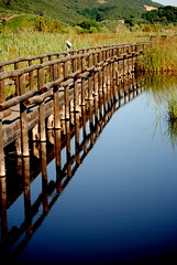 olriflettiamo (Claudia Gaiotto) Tags: italy nature water reflections tuscany massaciuccoli canneto camminamento oasinaturalistica bellitalia