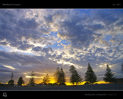 Heading East Looking West (tomraven) Tags: trees sunset sky sun west clouds silhouettes napier hdr speckledsky roadlesstravelled headingeast tomraven aravenimage q42010