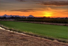 Sunset over the Sutter Buttes (Thad Roan - Bridgepix) Tags: california trees sunset sun sunlight mountain color green grass clouds skyscape volcano colorful rice farm dome fields marysville hdr yubacity sutterbuttes buttes photomatix 200706 aplusphoto southbutte