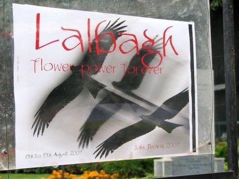 lalbagh flower power forever