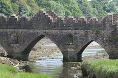 Bridge Relection (Terry Moran aka Tezzer57) Tags: bridge ireland reflection tinternabbey cowexford