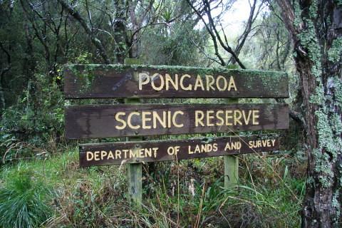 Pongaroa DOC sign