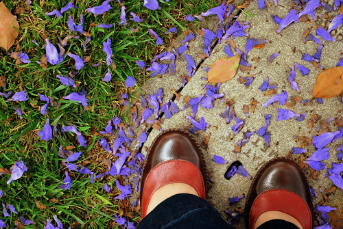 Jacaranda Shoes