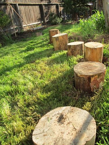 Fun stepping logs in the backyard