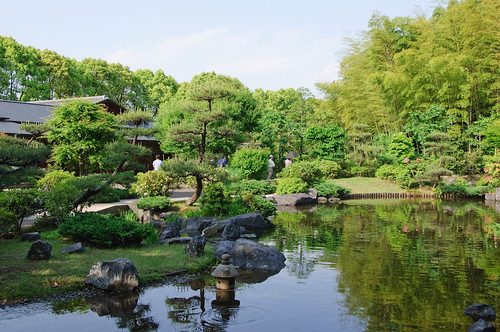 pond on Japanese garden
