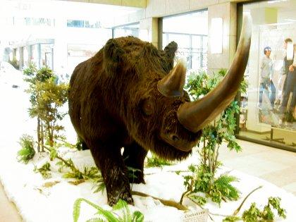 Uhrzeit Nashorn in Berlin Hellersdorf