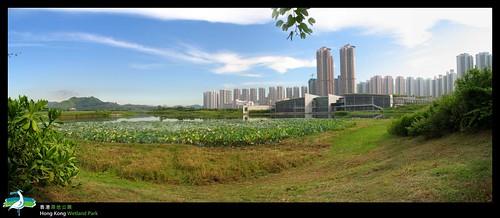 池旁的濕地公園訪客中心
