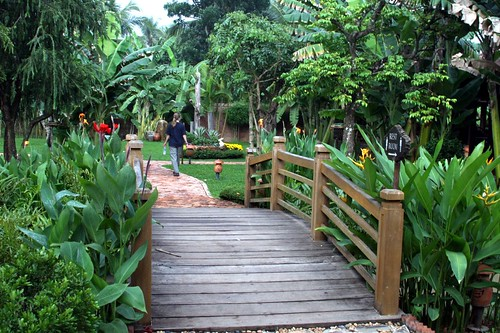 """At the """"bonsai garden"""" on the way back to HCMC"""