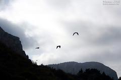 To the third.. (Renmarc) Tags: sea summer sky italy cloud nature canon italia mare nuvola estate natura cielo sicily capo zafferano capozafferano renmarc