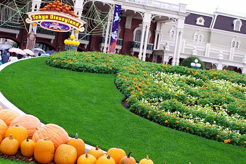 TDL-Halloween2007-02