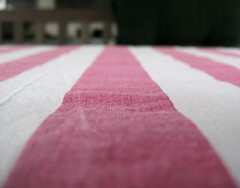 pink-white tablecloth (corrada2000) Tags: pink white bench rosa tablecloth bianco blanc weis gartenbank tischtuch vanagram