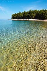 In the sea (thenightrider) Tags: sea beach island croatia more pag adriatic hrvatska otok povljana plaže