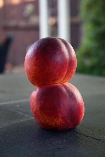 Nectarine twins